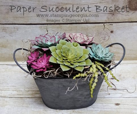 DIY Basket of Forever Succulents!