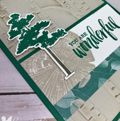 Add Ink to Your Embossing Folders